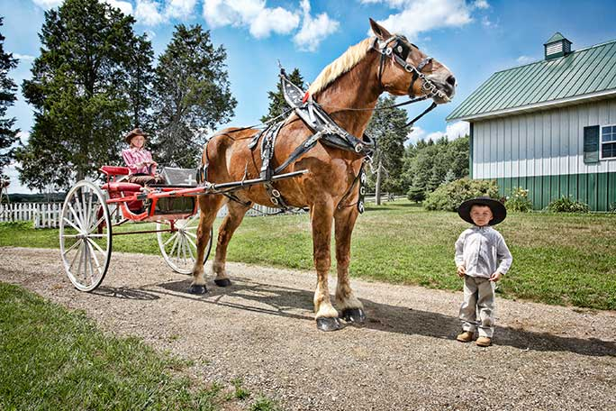 2011: Guinness World Records visited Smokey Hollow Farm to take photos of Big Jake for the book